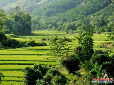 乐东天气预报30天查询,乐东县一个月天气