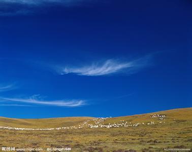 红原天气预报30天查询,红原县一个月天气