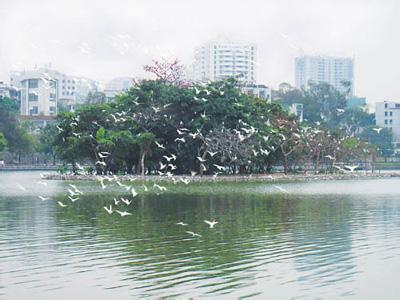 惠州惠城天气预报_惠城天气预报一周7天10天15天惠州惠城天气预报,惠城天气预报一周7天10天15天